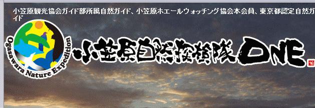 link_ogasawarasizenntannkenntai